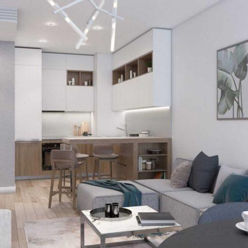 2 Room St. Petersburg Apartment Interior Design